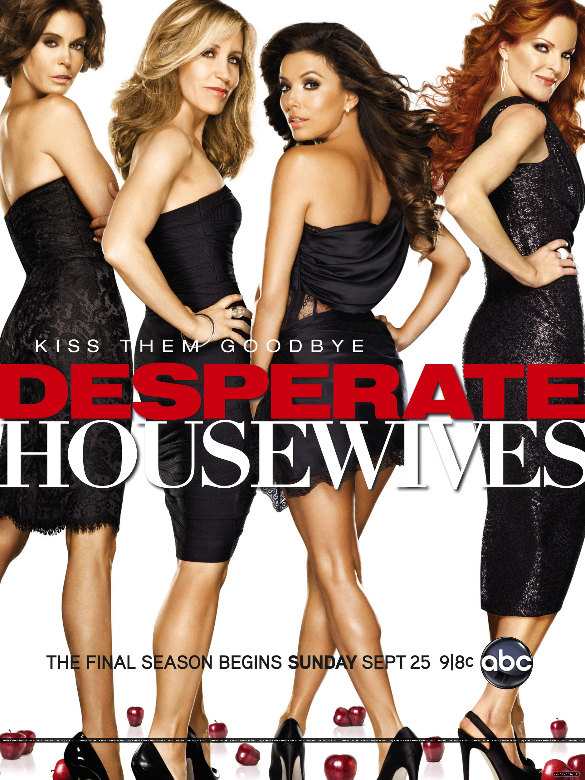 desperate housewives saison 8 dvd blu ray. Black Bedroom Furniture Sets. Home Design Ideas
