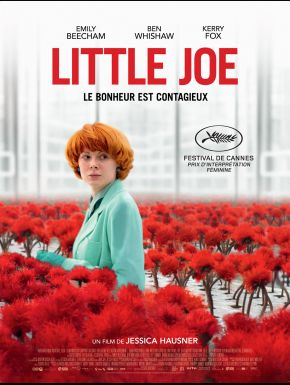 DVD Little Joe