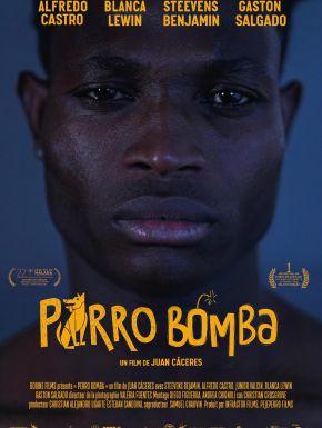 DVD Perro Bomba