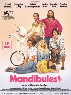 sortie dvd  Mandibules