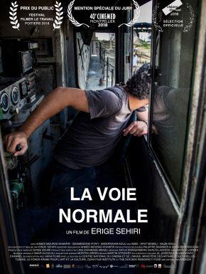sortie dvd  La Voie Normale
