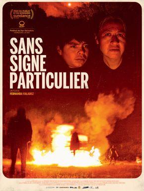 DVD Sans Signe Particulier