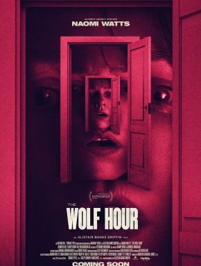 Jaquette dvd The Wolf Hour