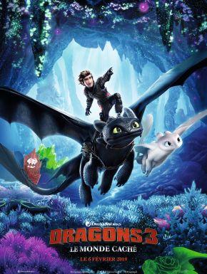 Jaquette dvd Dragons 3 : Le Monde Caché