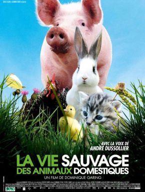sortie dvd  La Vie sauvage des animaux domestiques