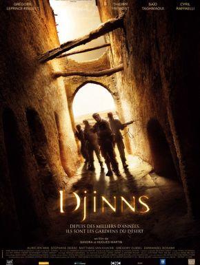 Sortie DVD Djinns