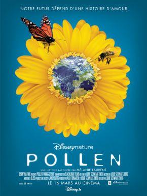 DVD Pollen