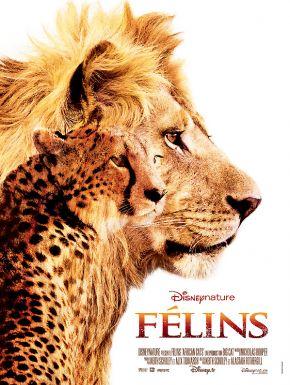 DVD Félins - Le Royaume Du Courage