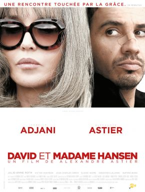 DVD David Et Madame Hansen