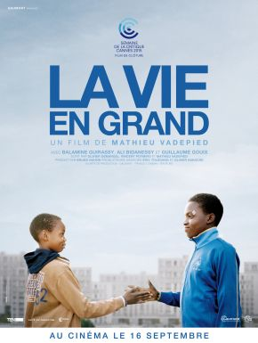 Sortie DVD La Vie En Grand