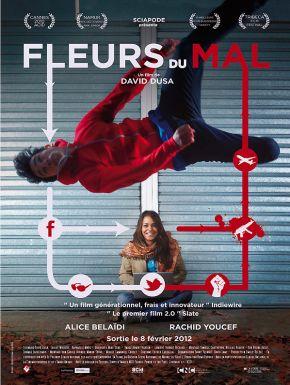 sortie dvd  Fleurs Du Mal