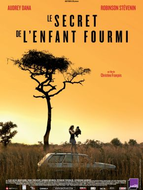 DVD Le Secret De L'enfant Fourmi