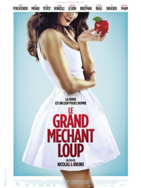 DVD Le Grand Méchant Loup