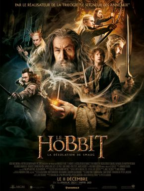 DVD Le Hobbit : La Désolation De Smaug