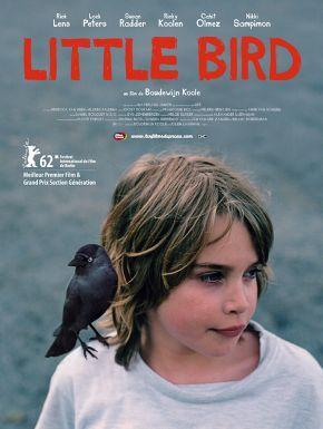 Jaquette dvd Little Bird