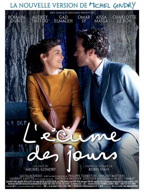 Jaquette dvd L'Ecume Des Jours