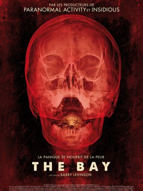 DVD The Bay
