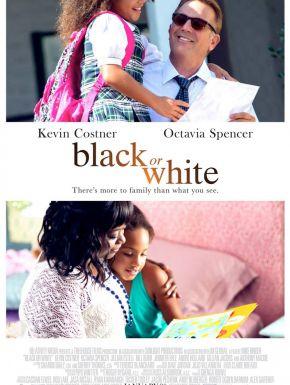 sortie dvd  Black Or White
