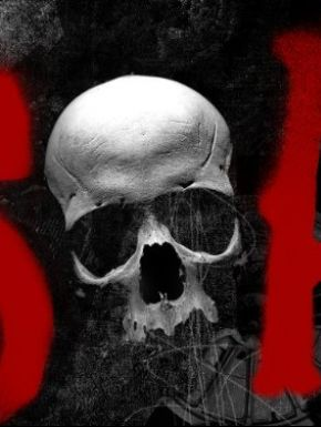 sortie dvd  Sons Of Anarchy - Saison 5