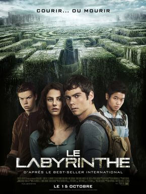Le Labyrinthe DVD et Blu-Ray