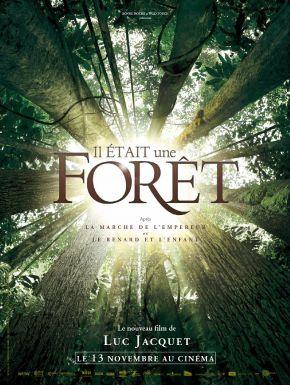 DVD Il était Une Forêt