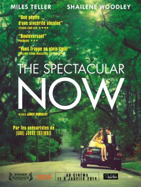 The Spectacular Now DVD et Blu-Ray