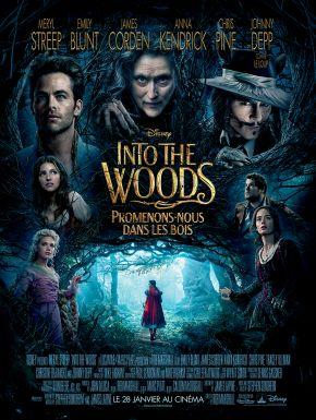 Into The Woods: Promenons-nous Dans Les Bois DVD et Blu-Ray