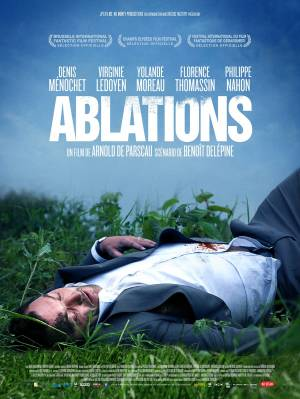 DVD Ablations