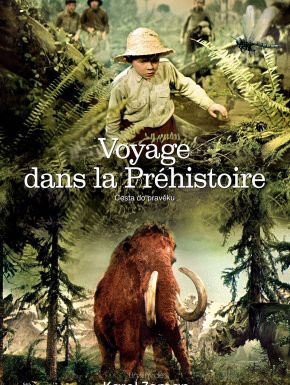 DVD Voyage dans la préhistoire