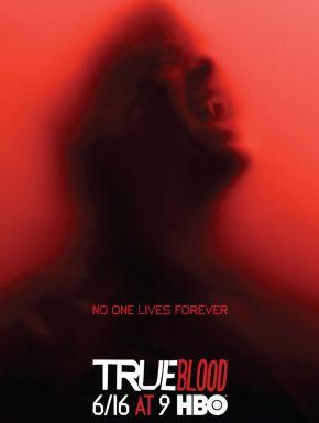 Jaquette dvd True Blood Saison 6