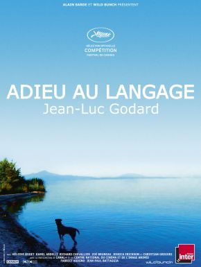 DVD Adieu Au Langage