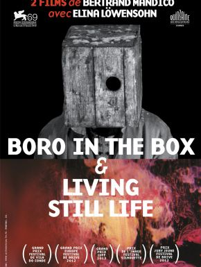 Jaquette dvd Boro In The Box Et Living Still Life