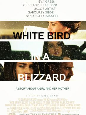 DVD White Bird