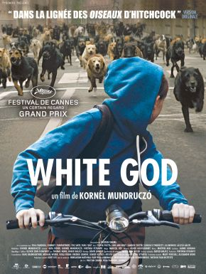 White God DVD et Blu-Ray