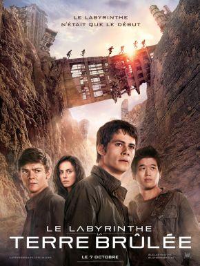 DVD Le Labyrinthe : La Terre Brûlée