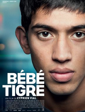 Bébé Tigre DVD et Blu-Ray