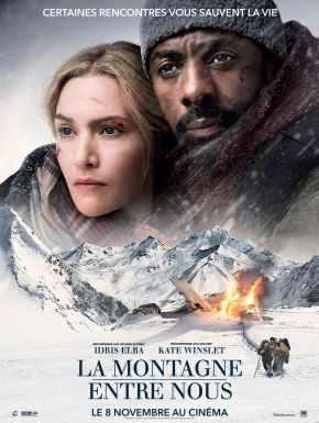 The Mountain Between Us DVD et Blu-Ray