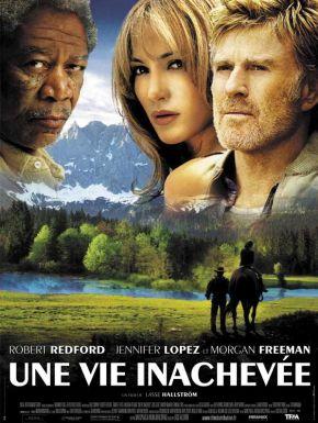 Une Vie Inachevée en DVD et Blu-Ray