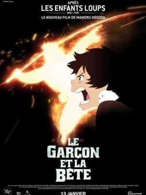 DVD Le Garçon Et La Bête
