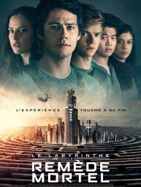 DVD Le Labyrinthe : Le Remède Mortel