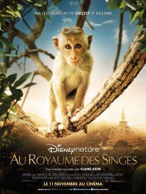 DVD Au Royaume Des Singes