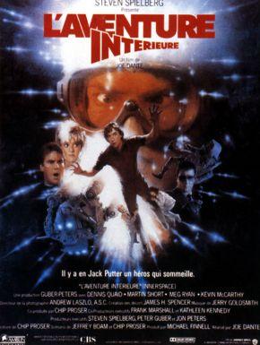 sortie dvd  L'Aventure Intérieure