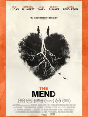 DVD The Mend