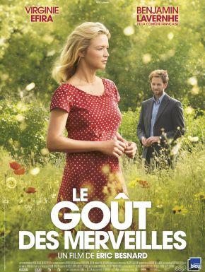 DVD Le Goût Des Merveilles