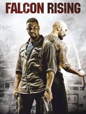 Falcon Rising en DVD et Blu-Ray