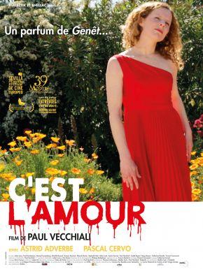 C'est L'amour DVD et Blu-Ray