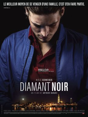 DVD Diamant Noir