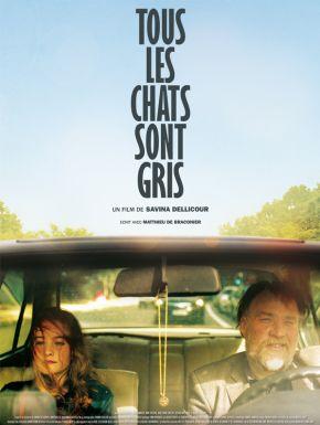DVD Tous Les Chats Sont Gris
