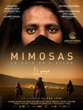 Mimosas, La Voie De L'Atlas DVD et Blu-Ray