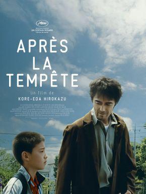 DVD Après La Tempête